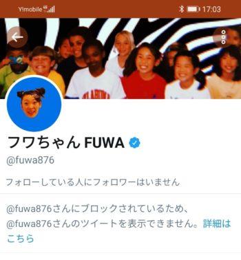 フワちゃんにブロックされるTwitterの様子