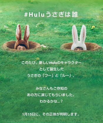 Huluで花晴れ続編決定?いつ配信?はなひらコンビ復活でファン騒然